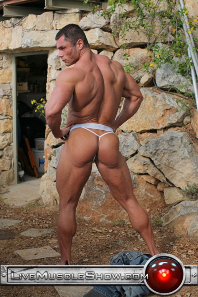 gallery gay muscle usa