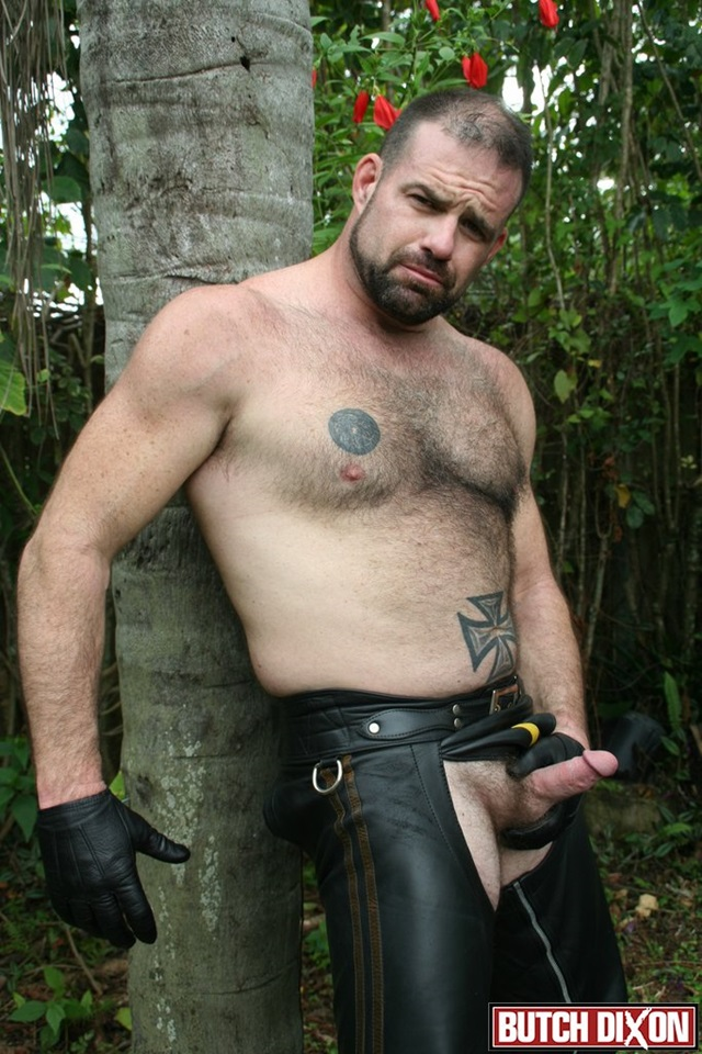Cubs and bear sex galleries
