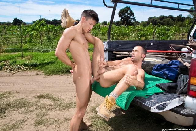 Gay Porn Streaming Sites 81