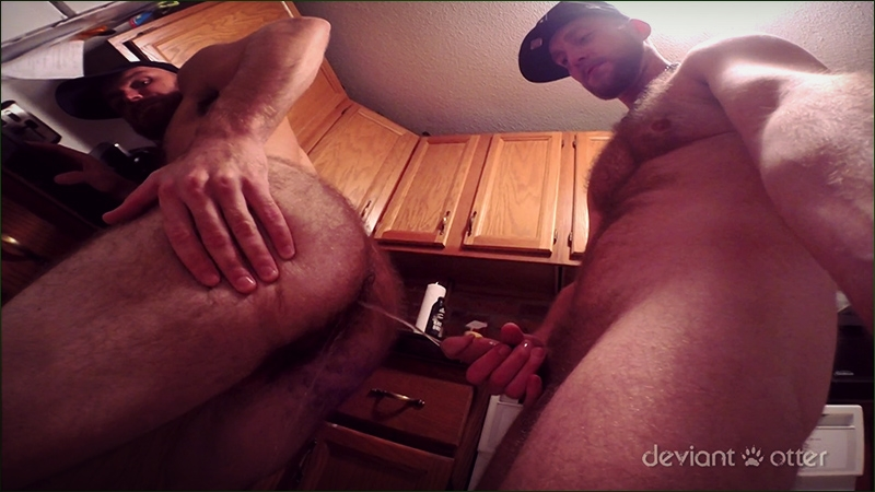 deviant otter  Bearded bro breeding