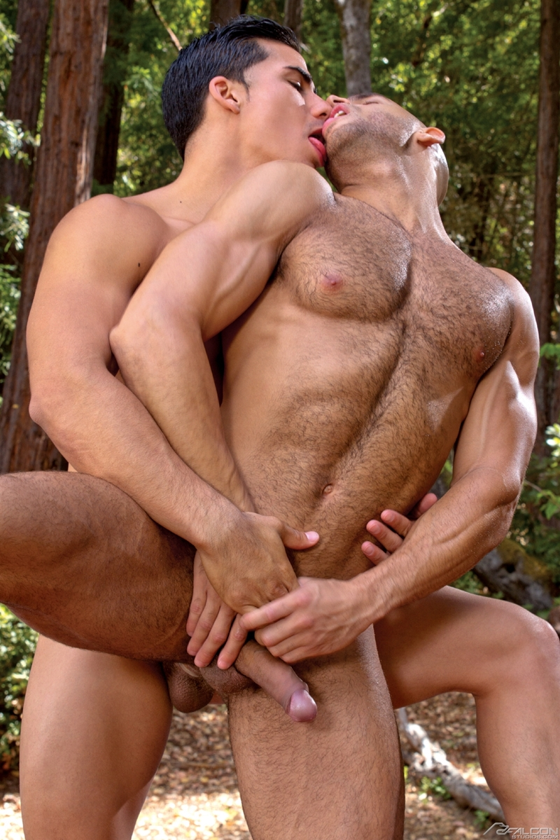 Gay muscled sex