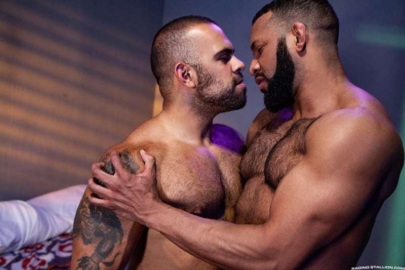 Jay Landford Lorenzo Flexx bareback fucking big black cock muscle ass hole RagingStallion 008 gay porn pictures gallery - Jay Landford takes ownership of Lorenzo Flexx's hole with passionate kisses and long driving thrusts of his raw glistening cock