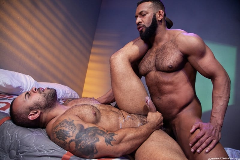 Jay Landford Lorenzo Flexx bareback fucking big black cock muscle ass hole RagingStallion 013 gay porn pictures gallery - Jay Landford takes ownership of Lorenzo Flexx's hole with passionate kisses and long driving thrusts of his raw glistening cock